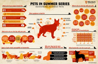pets_on_holiday_infograph
